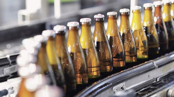 Пилот по маркировке пива начнется с брендов «Жигули» и  «Хамовники»