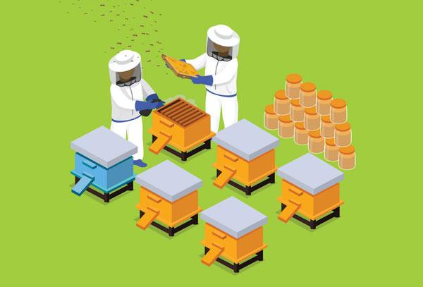 Пчеловодческий бизнес план идей бизнес ру
