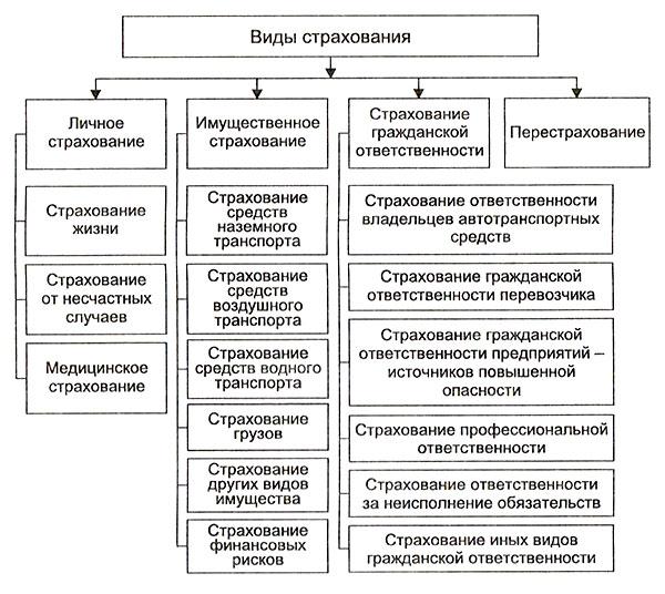 главные условия договора страхования