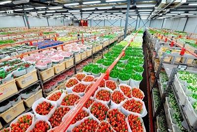 Изображение - Бизнес план цветочного магазина a6044d505b45b83a5c024957469c4d7b