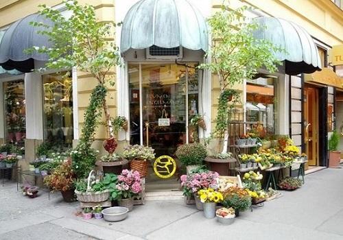 Изображение - Бизнес план цветочного магазина fae40bac4b962786cbbd02f817e47c51